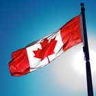 Going Digital: 5 Reasons to Go Digital in Canada for 2013