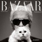 Magazine Creative: Karl Lagerfeld for Harper's Bazaar UK