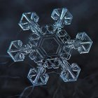Cool Photos: Macro Snowflakes by Alexey Kljatov