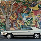 Cool Photos: Parked Cars by Franck Bohbot