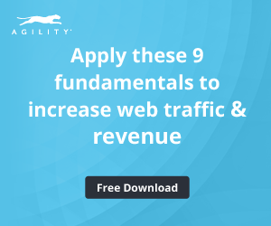 Free Download: Increase Web Traffic and Revenue