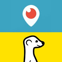 What Marketers Need to Know About Meerkat & Periscope