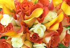 Selecting Your Flowers