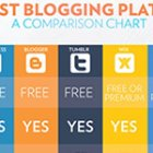 The Best Blogging Services Infographic