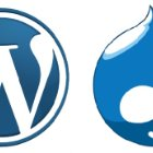 A Look at WordPress and Drupal for Creating Websites