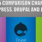 The 2015 WordPress vs Joomla vs Drupal Infographic