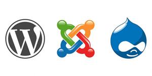 Wordpress, Joomla, and Drupal Icons