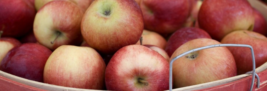 Apples - Fall