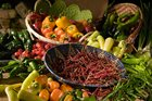 Top Tips to Enhancing Your Farmers' Market Shopping Experience!