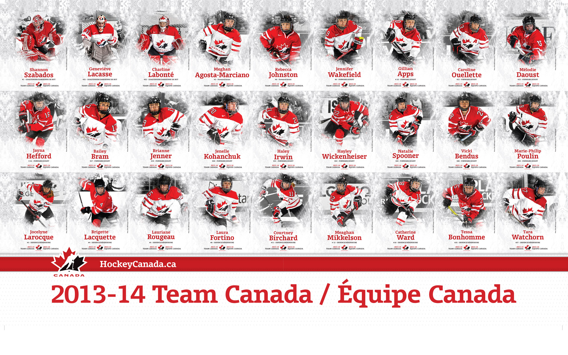 Team_Canada_fan_at_women's_ice_hockey_gold_medal_game_-_US_vs._Canada ...