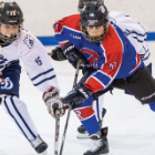 Spring hockey a big deal in B.C.