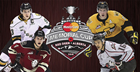 2016 MasterCard Memorial Cup Preview