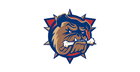 Hamilton Bulldogs overhaul ticket prices, scrapping three-tier system and online fees