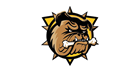 Are the pieces now in place for Hamilton Bulldogs?