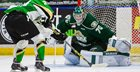 Hit or Miss? The CHL's European Goalie Ban, 3 years later