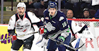 Thunderbirds Falter Against Memorial Cup Host Spitfires