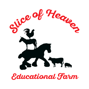 Summer Camp Sign-Ups: One Day & Weekly -Slice of Heaven Educational Farm