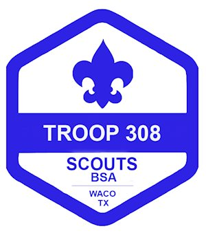 Troop 308G - Rally Day (Scouts BSA Informational Event)