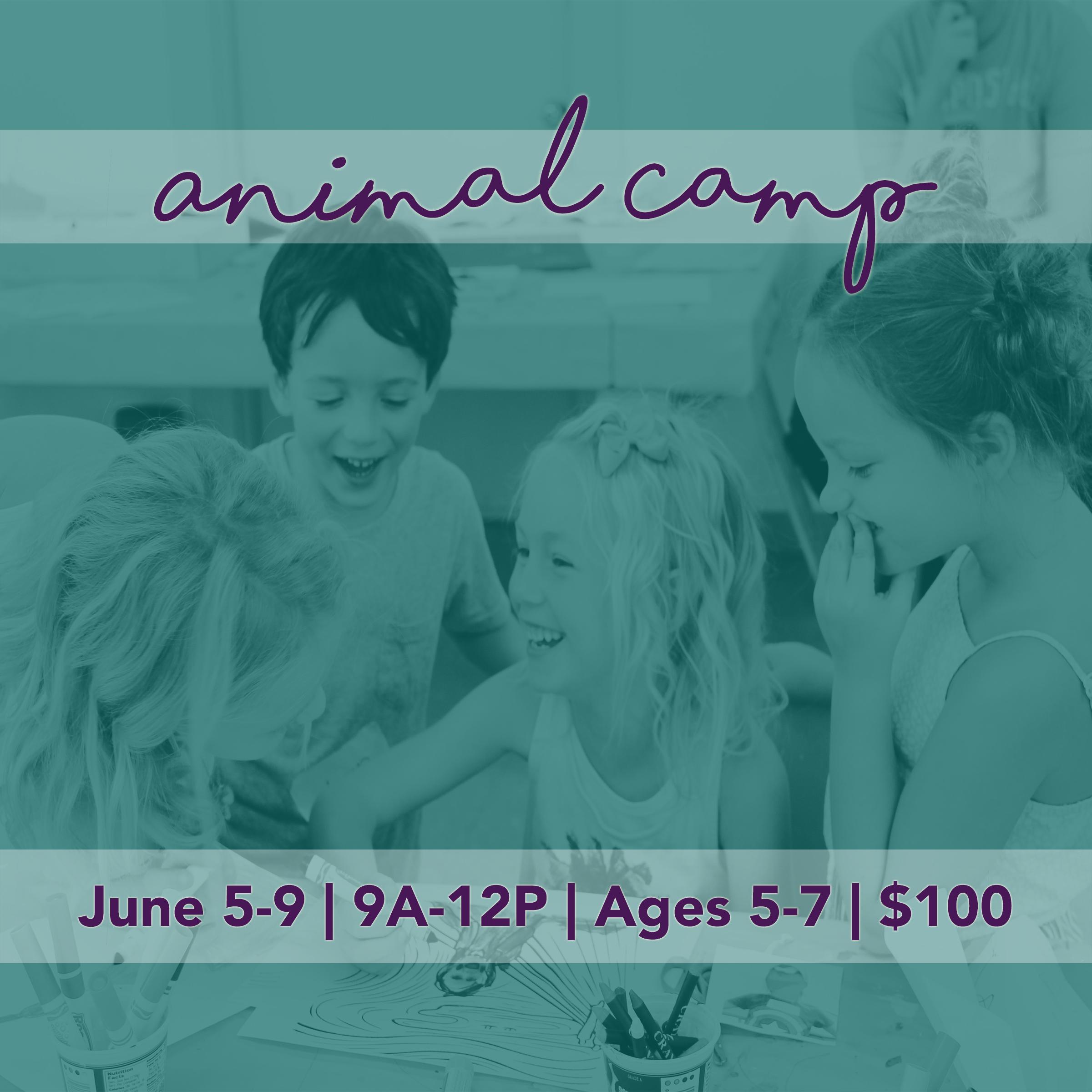 Animal Camp - The Art Center of Waco