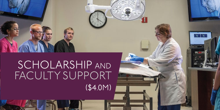 SCHOLARSHIP AND FACULTY SUPPORT