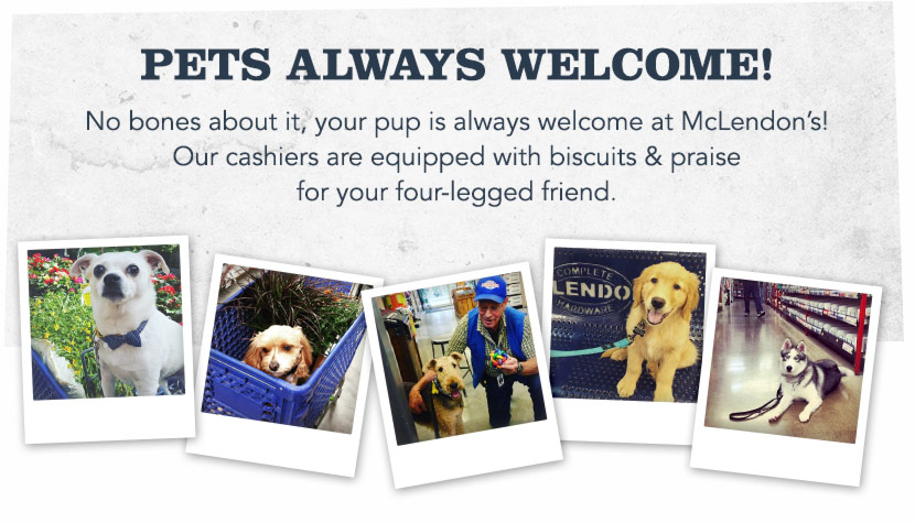 Pet's welcome at McLendon's