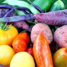 Color Your World with Fruits and Vegetables