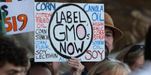 GMO Label protest sign