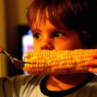 The Dangers GMOs Pose to Children's Health