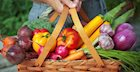 Are Vegetables Healthier Raw or Cooked?