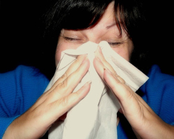Sneezing, itchy eyes, and runny nose are common responses to allergens. Photo: mcfarlandmo via Flickr.com.