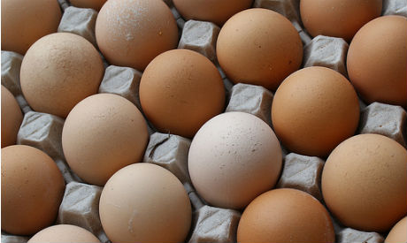 Study finds that eggs are not associated with heart disease