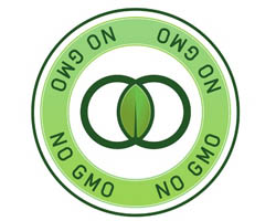 Genetically Modified Organisms (GMOs) Update GMO genetically modified gmo corn labeling gmos genetically modified animals