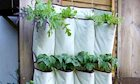 5 Super Crafty Ideas for Starting a Spring Garden with Limited Space