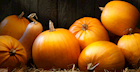 Pumpkins: Trick or Treat? 7 Surprising Things You Didn't Know About Pumpkins But Should