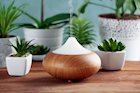 5 Things to Consider When Purchasing an Essential Oil Diffuser