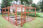 How to Build a Squirrel-Proof Enclosure for Your Vegetable Garden