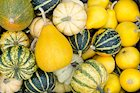 9 Heirloom Winter Squash Varieties Just in Time For Fall
