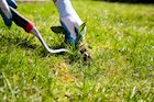 Natural Weed Killers & Fertilizers That Really Work!