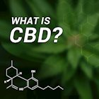 What Is CBD Hemp Oil and Why Does It Work?