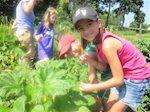 Notes from a Suburban Mom: Introducing…HealthBarn USA