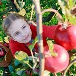 Fun Farms in New Jersey - Pick Your Own Farms