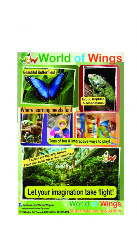 World of Wings Butterfly Museum & Atrium