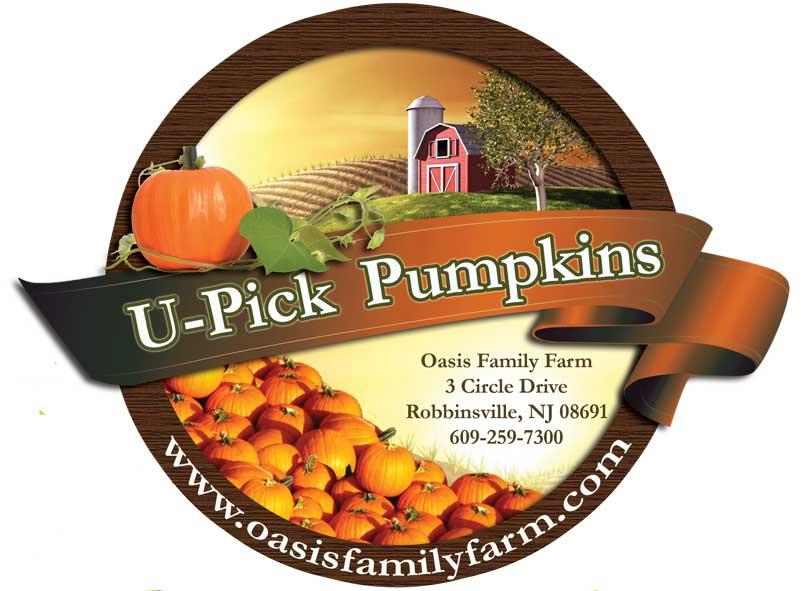 U-Pick Pumpkins at Oasis Family Farm