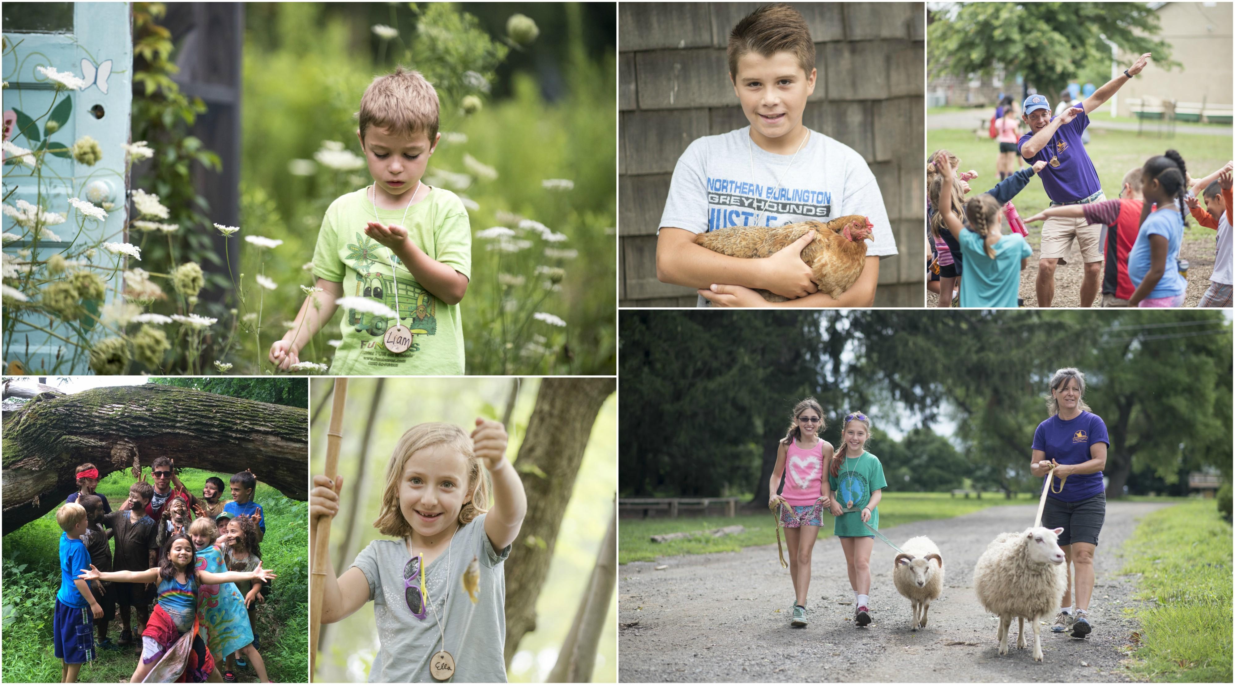Summer Camp Open House @ Fernbrook Farms