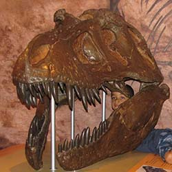 Dino Day Family Festival at Morris Museum