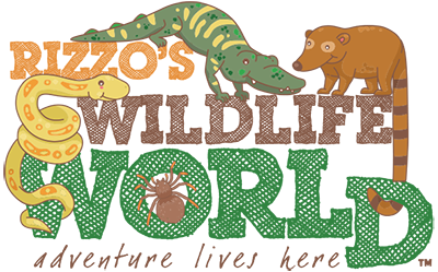 Rizzo's Animal Show