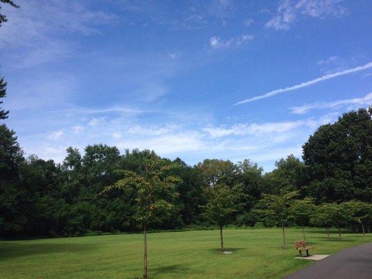 Saddle River County Park - Glen Rock Area