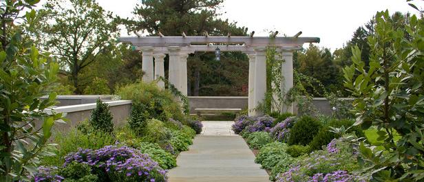 FROG WATCH USA at Greenwood Gardens