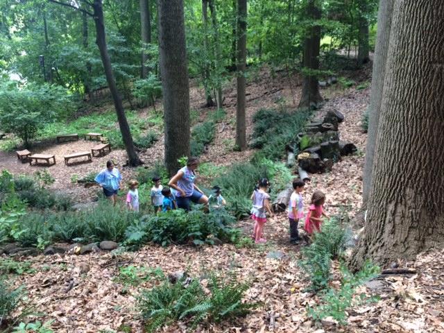 Turtle Tot- Toddler Programs at Cora Hartshorn Arboretum