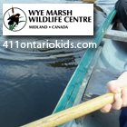 The Wonder of Nature for Kids at the Wye Marsh